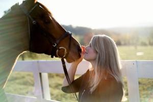 sb_horse